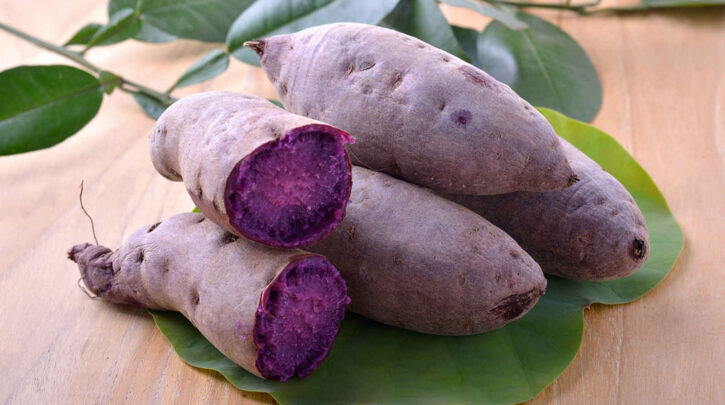 Can Dogs eat Ube